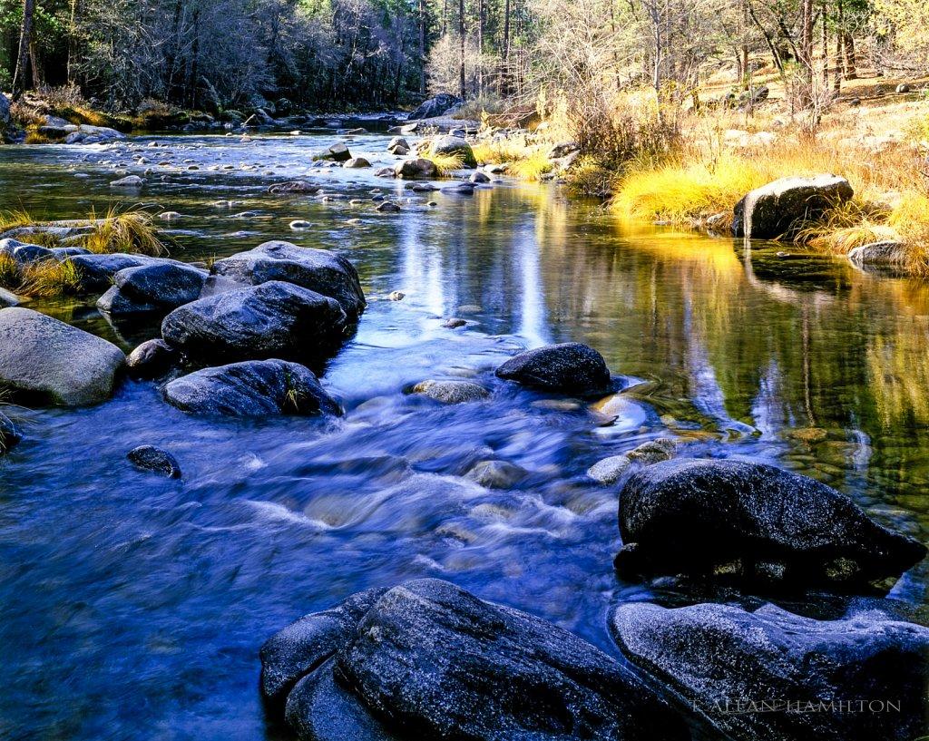 Yosemite- Near Wawona